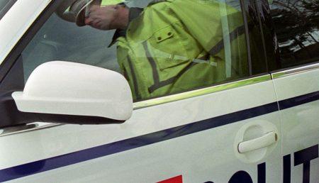 Vicele de la Stefanesti s-a predat Politiei