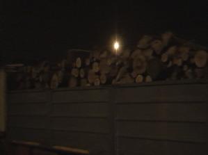 Zeci de metri cubi de lemne confiscate si amenzi de sute de mii de lei