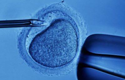 Fertilizarea in vitro, decontata