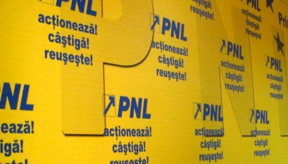 PNL_ARGES_PANOU_1