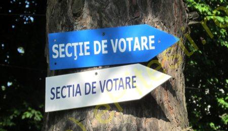 ARGEȘENII VOTEAZĂ AZI LA DUBLU: PREȘEDINȚIA CONSILIULUI JUDEȚEAN ȘI EUROPARLAMENTARE