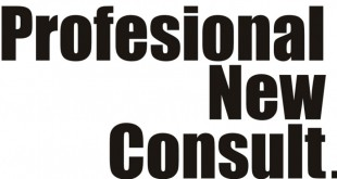 PROFESIONAL-NEW-CONSULT-11-1024x463