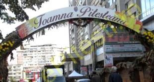 TOAMNA-PITESTEANA-1