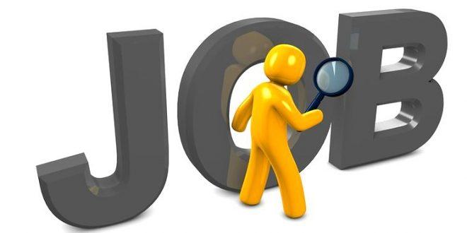 locuri-de-munca-angajari