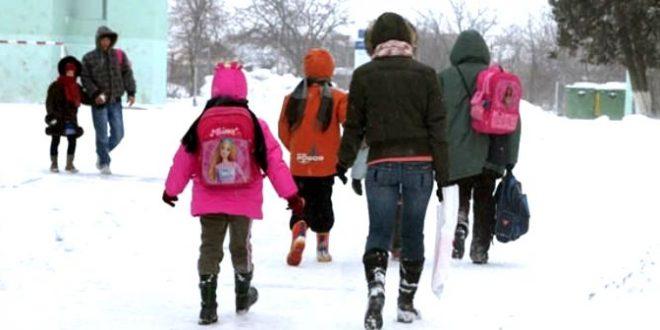 elevi-iarna