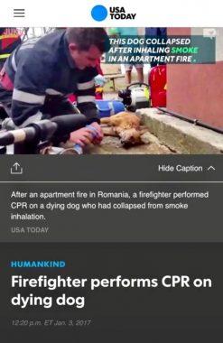 isu-pompier-salvator-usa-today-2