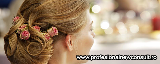 New Profesional Consult-555×222