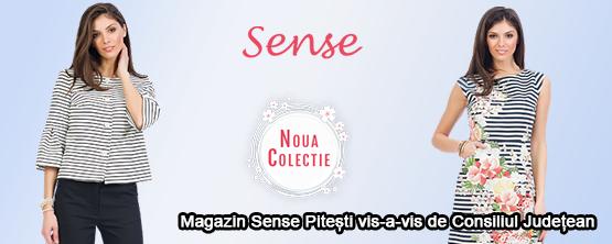 Fashion Sense 555 x 222