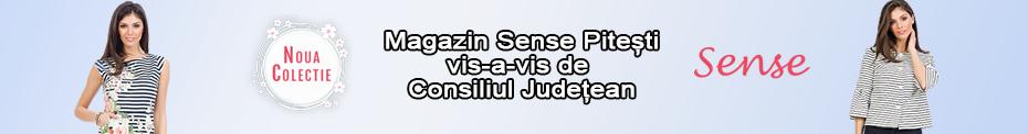 Fashion Sense 930 x 122