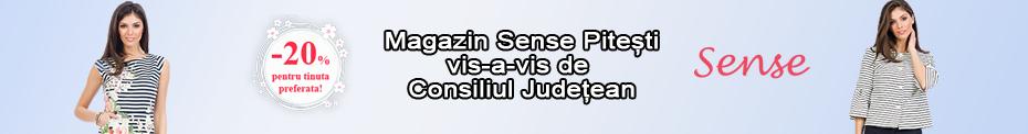 Fashion Sense 930 x 122 2