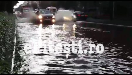 (VIDEO) PRUNDU: FURTUNA A FĂCUT PRĂPĂD