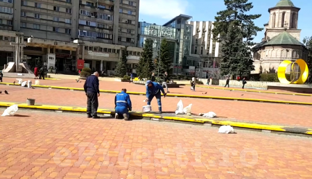 (VIDEO) PITEȘTIUL PRINDE CULOARE