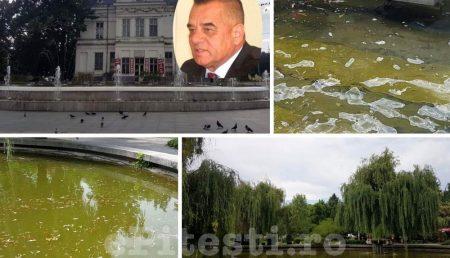 (VIDEO) APE TULBURI SUB NASUL PRIMARULUI IONICĂ