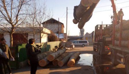 (VIDEO) CAMION OPRIT ÎN TRAFIC. LEMNE CONFISCATE