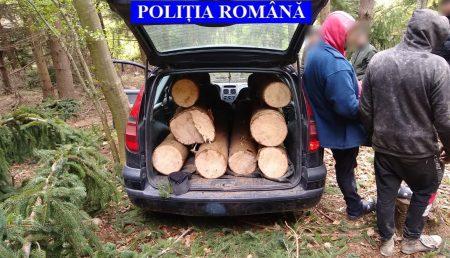 """ARGEȘ: 22 DE GĂINARI, """"ALTOIȚI"""" DE POLIȚIE ȘI GARDA FORESTIERĂ"""