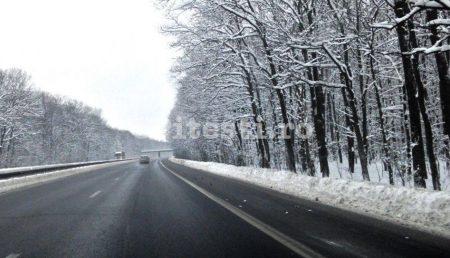 PERDELE FORESTIERE PE A1, ÎN ARGEȘ