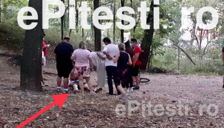 (VIDEO) DIN PĂDURE, DIRECT LA SPITAL. O PANTĂ ABRUPTĂ I-A VENIT DE HAC
