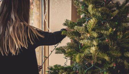 Primăria Piteşti adună brazii de Crăciun