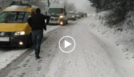 Video: Bradul era să-i strivească în maşină