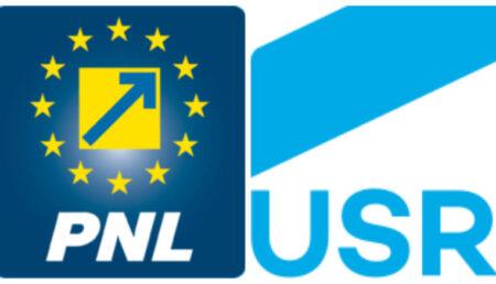 PNL și USR au rămas fără candidat la Aninoasa!