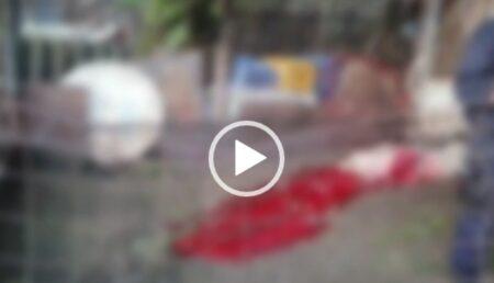 """Video: Prăpăd într-o gospodărie din Argeș. Un urs flămând a """"tranșat"""" porcii ca la abator"""