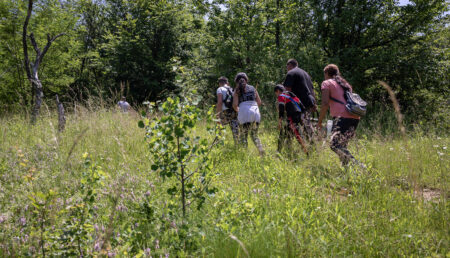 Drumul către educație: Într-un sat din Argeș, copiii traversează pădurea pentru a ajunge la școală