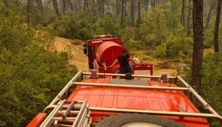 Simona Bucura Oprescu, mesaj pentru pompierii argeșeni plecați în misiune în Grecia