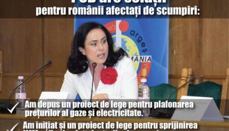 """""""PSD are soluții pentru a sprijini cetățenii și agenții economici să facă față valului de scumpiri"""""""